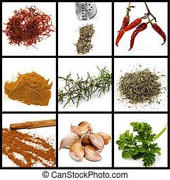 Spices y condimentos collage