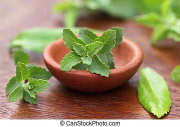 Stevia con otras hierbas medicinales