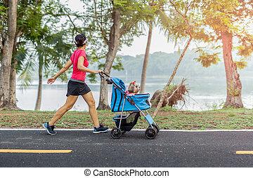 stroller., ambulante, parque, perro, ejercicio, pequeño, mujer, unidentifile