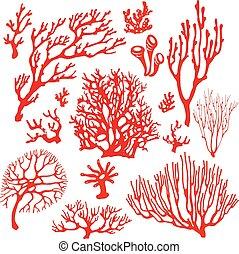 submarino, arrecife, plants., coral, conjunto
