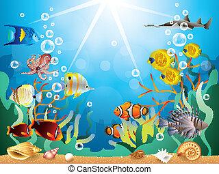 submarino, vector, ilustración, mundo