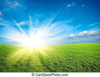 Sunset en el campo de verde hierba fresca bajo el cielo azul