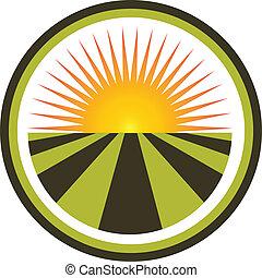 Sunset y vector de logo de campo