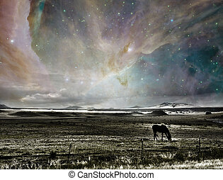 surreal, caballo, paisaje