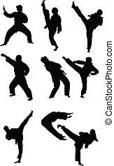 taekwondo, colección