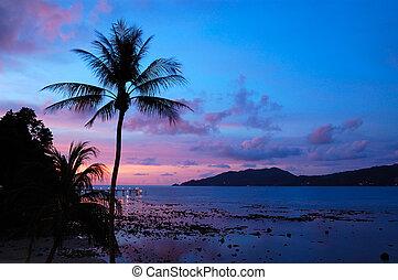 tailandia, ocaso, playa de patong, phuket