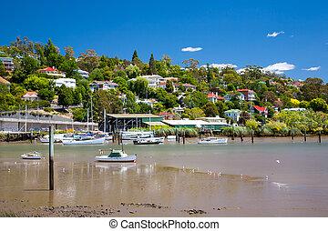 tamar, río, tasmania, launceston