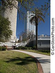 Tampa del centro