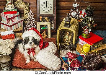 Tarjeta de felicitación para perros de Navidad