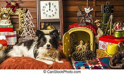 Tarjeta de Navidad de perros
