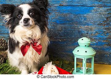Tarjeta de navidad para perros