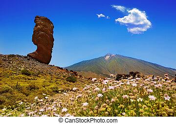 Teide Park roques de garcia en tenerife