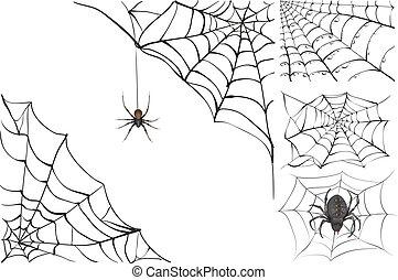 tela, venenoso, negro, araña