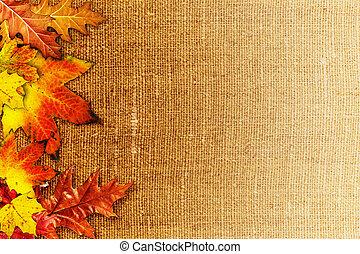 tela, viejo, encima, fondos, follaje de otoño, caído, resumen, arpillera