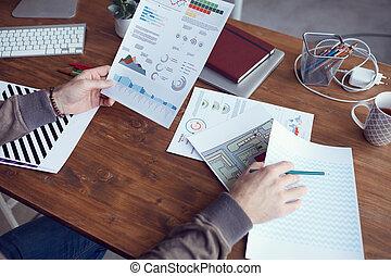 tenencia, empresa / negocio, gráfico, analista, datos
