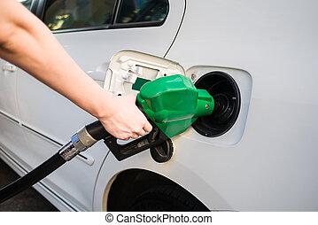 tenencia, hembra, verde, bomba, gasolina, mano, relleno