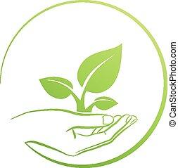 tenencia, planta, logotipo, mano, concepto