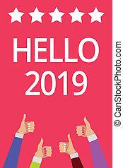Texto de palabras Hola 2019 concepto de negocios para esperar que una grandeza suceda para el próximo año hombres mujeres manos arriba aprobación cinco estrellas información rosa.