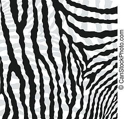 textura abstracta del vector de la piel de la cebra