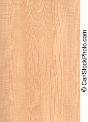 Textura de madera de arce