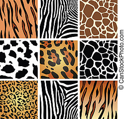 texturas de piel de animal