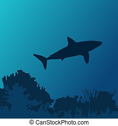 tiburón, mundo, submarino, océano