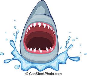 tiburón, vector
