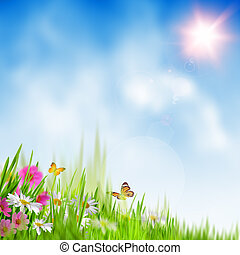 Tiempo de verano. Extractos antecedentes ambientales