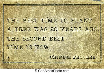 tiempo, mejor, proverbio