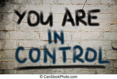 Tienes el concepto de control