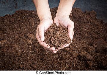 tierra, turba, mujer, musgo, mano