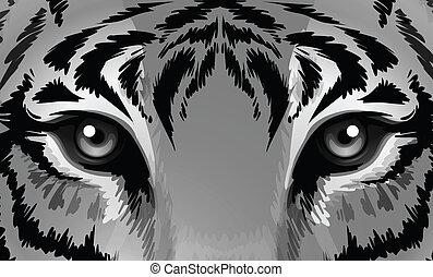 tigre, agudo, ojos