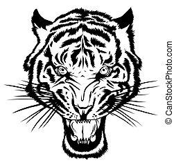 tigre, bigotes, imagen, vector, mascota, cabeza