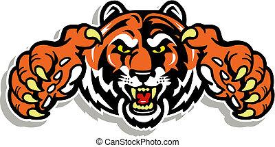 tigre, garras, cara