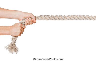 tirón, manos, aislado, plano de fondo, rope., blanco