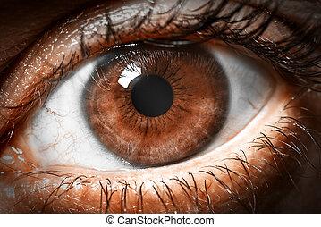 Tiro a macro de ojos marrones.