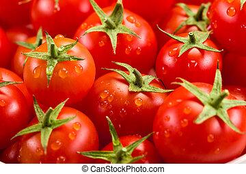 tomate, plano de fondo