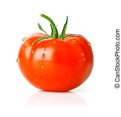 tomate, verde, fruta, hoja, fresco