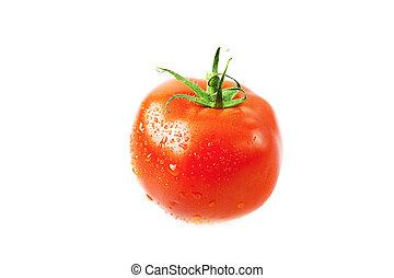 Tomates con gotas de agua aisladas en blanco