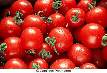 Tomates rojos mojados