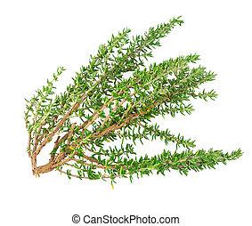 tomillo, fresco, rama, hierba