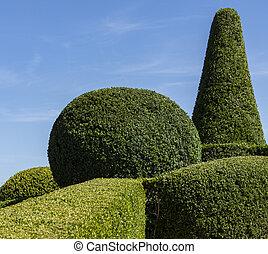 Topiary garden of the jardins de marqueyssac - dordogne - france