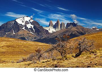 torres, chile, paine, del, patagonia