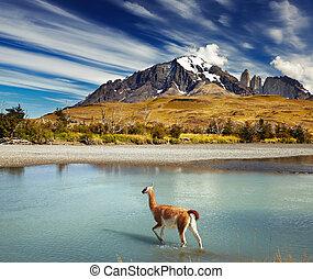 Torres del parque nacional de dolor, Chile