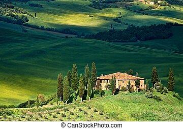 toscana, -, paisaje, belvedere
