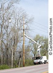 Trabajador en un camión de transporte, adornando árboles al lado de las líneas eléctricas