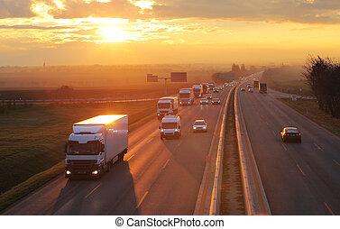 Transporte de carreteras con coches y camiones
