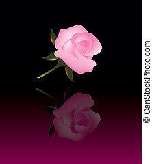 Trasfondo abstracto del vector con rosa rosa