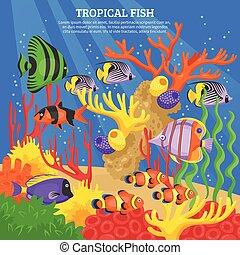 Trasfondo de peces tropicales