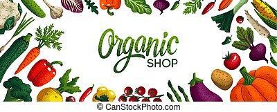 Trasfondo de tiendas orgánicas horizontales. Copia espacio. Variedad de vegetales decorativos con textura de grano en fondo blanco. Mercado de agricultores, afiche de comida orgánica, cubierta o diseño de pancartas. Vector.
